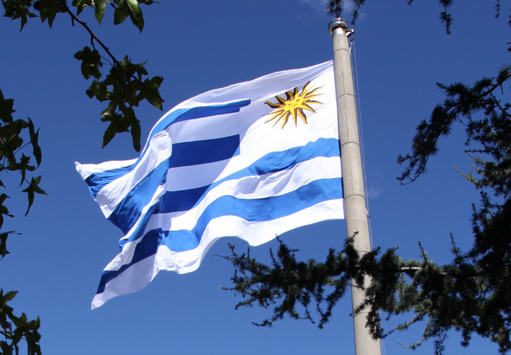 flag of Uruguay and the sun